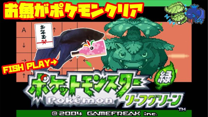 【1168h~_アジト攻略編】ペットの魚がポケモンクリア_Fish Play Pokemon【作業用BGM】