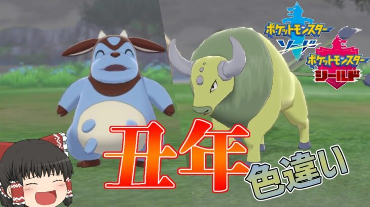 【ポケモン剣盾】今年は丑年!牛ポケモンの色違い粘り!【ゆっくり実況】色違い♯29
