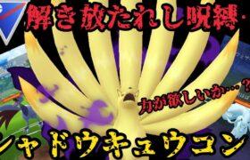 解き放たれし呪縛…シャドウキュウコン!【ポケモンGO】