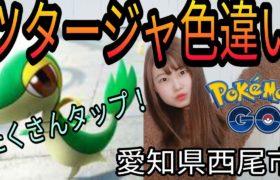 「ポケモンGO」ツタージャ捕獲しまくるぞ愛知県西尾市