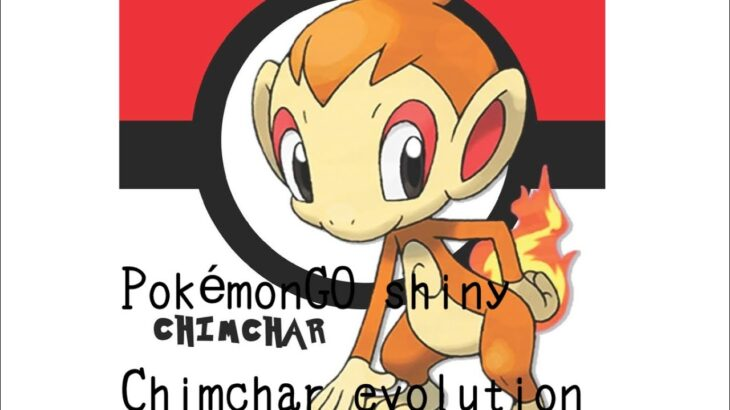 PokémonGO shiny Chimchar evolution ヒコザルポケモンGO