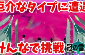 【ポケモンソードシールド】ひこう鋼タイプの巨体UB戦!ダイマックスアドベンチャー冠の雪原【エキスパンションパス】