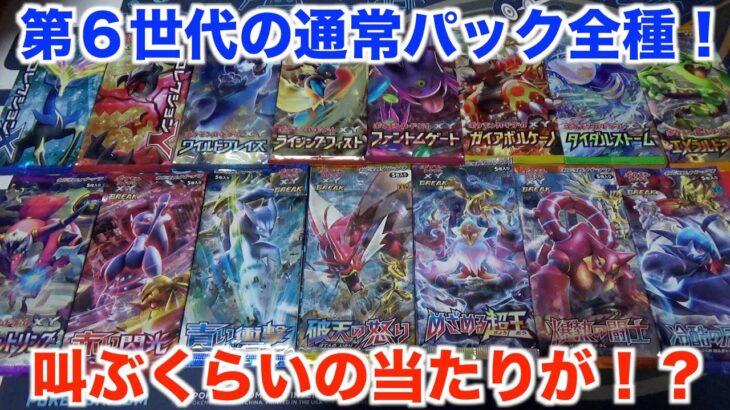 【ポケモンカード】X・Yシリーズのパックを大量開封!まさかの開封結果に!??