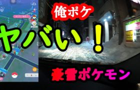 【ポケモンGO】やばい!豪雪ポケモンIN秋田