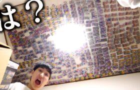 弟がむかつくので、ポケモンカード全部天井に貼りました【ドッキリ】
