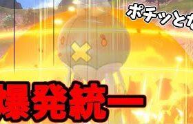 【ポケモン剣盾】ピンチになったら即爆破!!男のロマン爆発統一でたわむれる