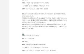 【ポケモン剣盾】構築記事を見る【あけおめ】