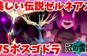 【ポケモンソードシールド】ゼルネアスの立ち姿に驚き!バランスよすぎ!冠の雪原【エキスパンションパス】