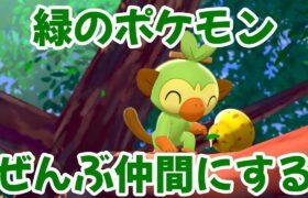 【ポケモンシールド】第3回 緑のポケモンと仲間になる!【縛りプレイ】