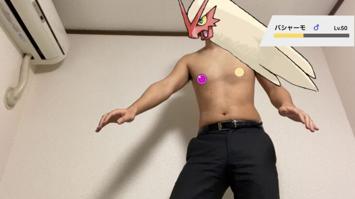 膝を割るバシャーモ【ポケモンものまね】