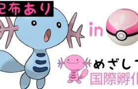夢ウパー 国際孵化♪初見さん大歓迎【ポケモン剣盾】【雑談】