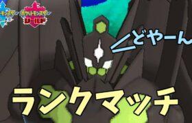 ジガルデ☆パーフェクトンコツ【ポケモン剣盾】