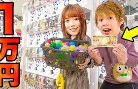 超大量のガチャガチャ1万円分やってみた!ポケモンの景品大量購入でコンプリートも!?【やり放題】【ガチャガチャの森 】