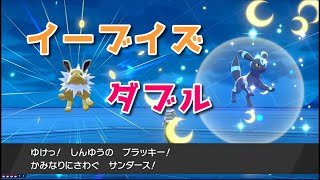 【ブイズ】地獄ツアー2期【ポケモン剣盾】