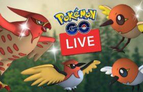 Fletchling Community Day Shiny Hunt Live Aussie Pokemon Go