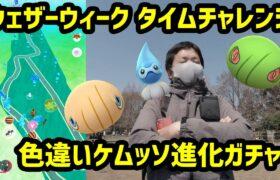 【ポケモンGO】ウェザーウィーク タイムチャレンジと色違いケムッソ進化ガチャ