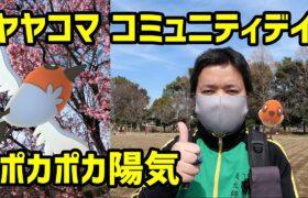 【ポケモンGO】陽気に恵まれヤヤコマのコミュニティデイ