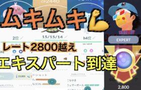 【ハイパープレミア】ムキムキXLポケモンを使って行く!!「GBL GOバトルリーグ ポケモンGO実況」