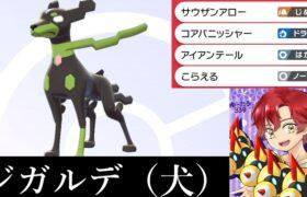 【配信】ジガルデ(いぬ)【ダブル/ポケモン剣盾】