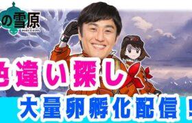 【ポケモン剣盾】たまご300個一気孵化配信!