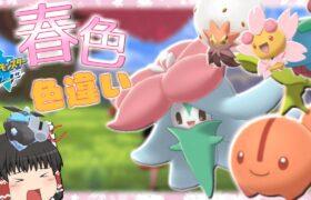 【ポケモン剣盾】色違いヒメンカとチェリンボが可愛すぎた【ゆっくり実況】