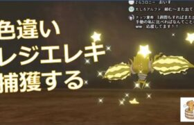 【ポケモン剣盾】色違いレジエレキを捕獲する【ライブ】