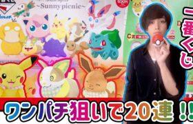 【一番くじ】おとなオシャレ!ポケモンくじをワンパチ狙いで20回引いた結果…【ポケットモンスター】Pokémon anytime ~Sunny picnic~