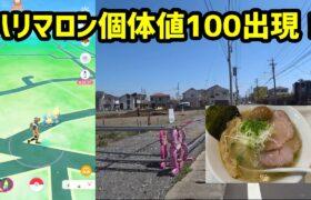 【ポケモンGO】遠方にハリマロンの個体値100出現、ゲットできるのか?
