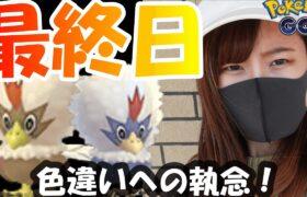 「ポケモンGO」ワシボン色違いへの執念の20連!