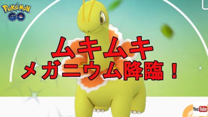 【ポケモンGO】完成したムキムキニウムで通常ハイパー!【GBL】