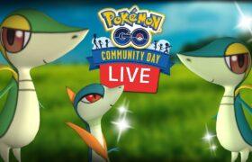 Snivy Shiny Community Day Live Shiny Hunt Pokemon Go