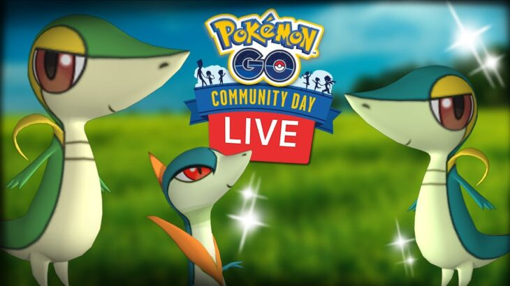 Snivy Shiny Community Day Live Shiny Hunt Pokemon Go