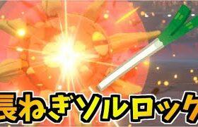 【ポケモン剣盾】圧倒的ハジケ魂を見せる!!ながねきソルロックが最高にヤバイ【頭が】