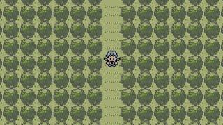 【ポケモン金銀クリスタル】壁抜けバグで隠しマップにいってみた