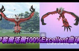 伊裴爾塔爾100%Excellent曲球Pokemon Go ポケモンGO イベルタル Yveltal 이벨타르 攻略法 エクセレント 定圈 抓法 教學 手勢 輔助觸控 AssistiveTouch