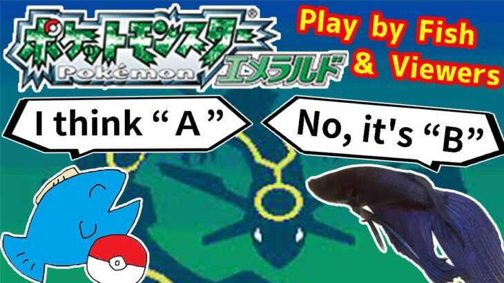 【184h~_ トクサネシティ編】お魚と視聴者でポケモンクリア_Play Pokémon with viewers and fish