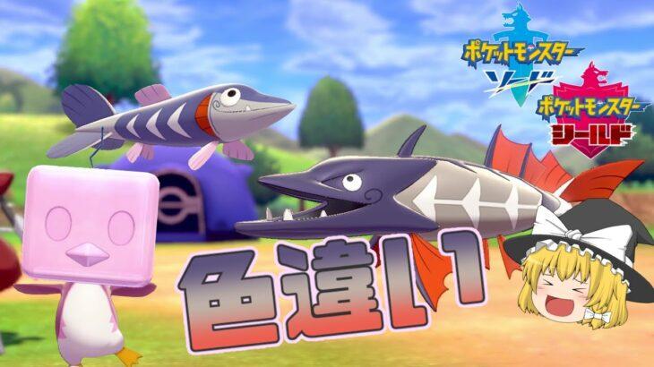 【ポケモン剣盾】素早くクールな青い魚と可愛いピンクペンギン!サシカマス一家とコオリッポの色違い!【ゆっくり実況】色違い♯36