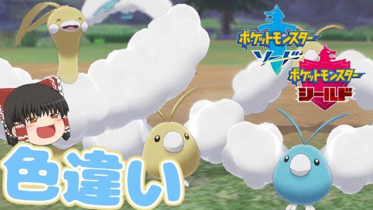 【ポケモン剣盾】もこもこな羽がとても可愛い!チルット一家の色違い!【ゆっくり実況】色違い♯37