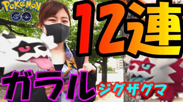 「ポケモンGO」ガラルジグザグマ12連!色違い欲しい!