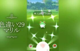 【ポケモンGO】色違い29、マリル