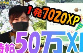 「ポケモンGO」時給50万XP超え!1発7020XPGET★100万XP貯めるぞ!愛知県岡崎市