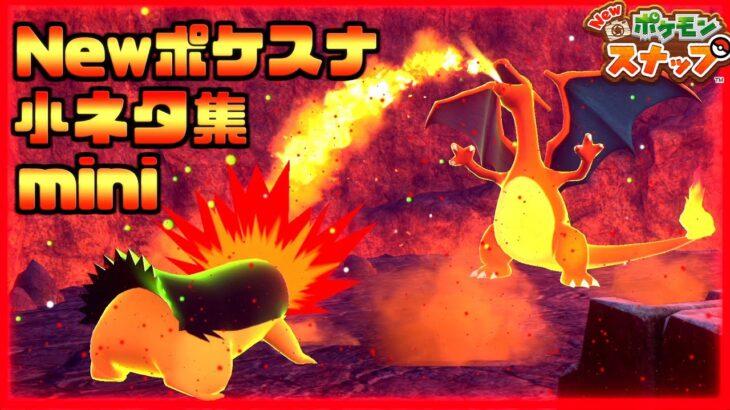 【Newポケモンスナップ】小ネタ集mini!縄張り争い リザードン対バクフーン、フライゴンの龍の舞etc…