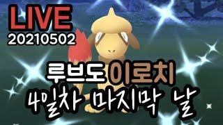 [포켓몬고] 루브도 이로치 마지막 날! Pokemon Go Korea