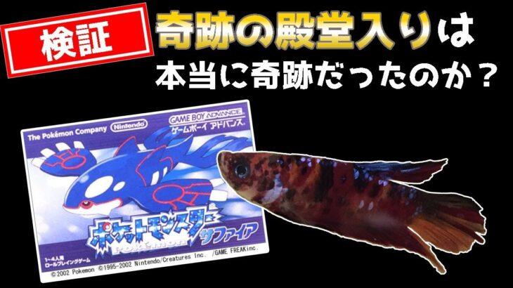 【番外編│RSポケモンリーグ】ペットの魚がポケモンクリア_Fish Play Pokemon【作業用BGM】