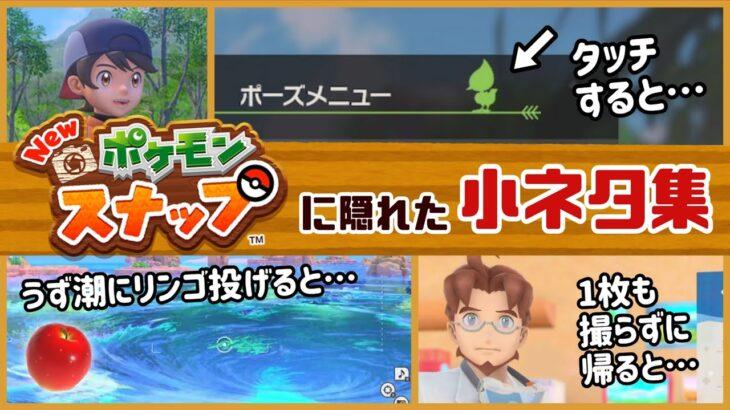 Switch「Newポケモンスナップ」に隠れた細かすぎる小ネタ集!【ポケスナ】@レウンGameTV