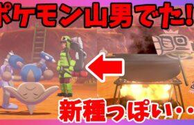 【ポケモンソードシールド】新種のポケモン山男!?初めてのコゲカレー??