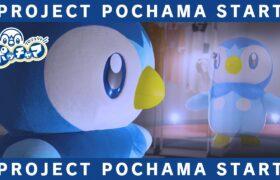 【公式】プロジェクトポッチャマ始動!