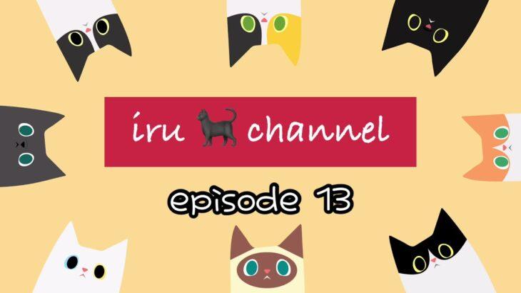 ポケモンGo!もするよ【黒猫  iru episode13 Blackcat iru's growth diary】