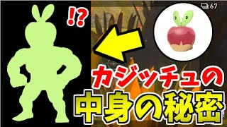 【禁忌】Newポケモンスナップで明かされる カジッチュの中身を徹底捜索!!【実はすごぉい】