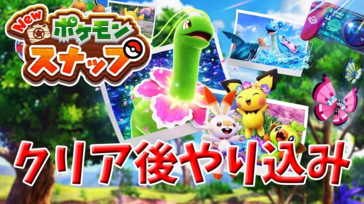 『New ポケモンスナップ』リクエスト攻略【雪原&洞窟】